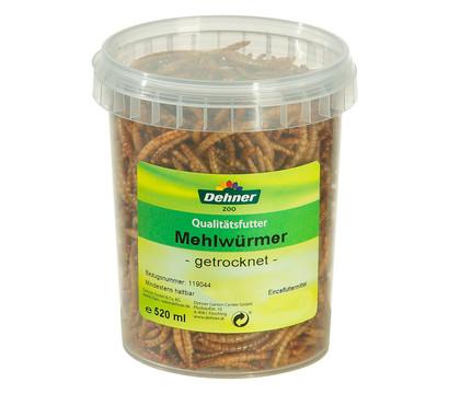 Dehner Mehlwürmer, 520 ml