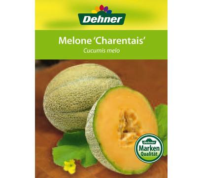 Dehner melone 39 charantais 39 dehner garten center for Melone charentais