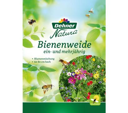 Dehner Natura Samen Blumenmischung 'Bienenweide', 60 - 80 cm hoch