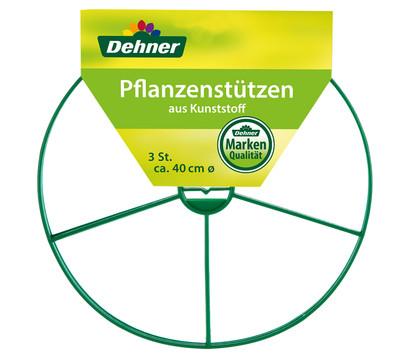 Dehner Pflanzenstützen, 3 Stk.