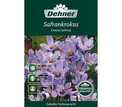 dehner premium blumenzwiebel safrankrokus 39 crocus sativus. Black Bedroom Furniture Sets. Home Design Ideas