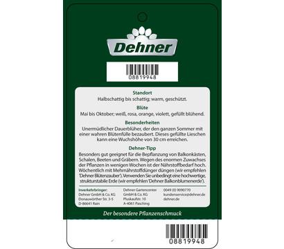 dehner premium flei iges lieschen xxl dehner garten center. Black Bedroom Furniture Sets. Home Design Ideas