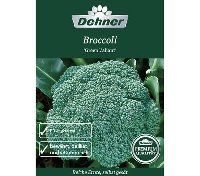 Dehner Premium Samen Broccoli 'Green Valiant'
