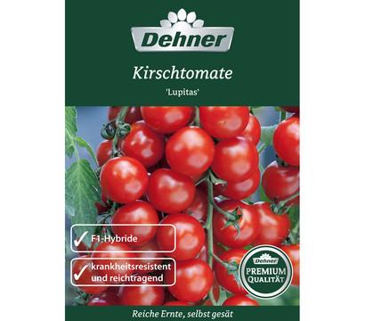 Dehner Premium Samen Kirschtomate 'Lupitas'