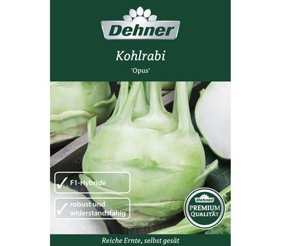 Dehner Premium Samen Kohlrabi 'Opus'