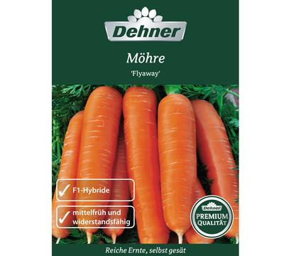Dehner Premium Samen Möhre 'Flyaway'