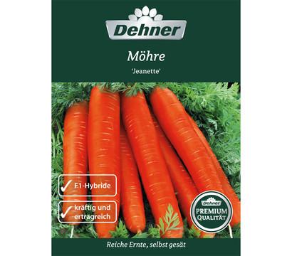 Dehner Premium Samen Möhre 'Jeanette'