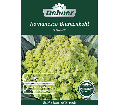 dehner premium samen romanesco blumenkohl 39 veronica 39 dehner garten center. Black Bedroom Furniture Sets. Home Design Ideas