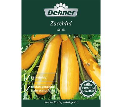 dehner premium samen zucchini 39 soleil 39 dehner garten center. Black Bedroom Furniture Sets. Home Design Ideas