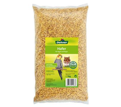 Dehner Qualitätsfutter Hafer für Vögel und Nager, 1 kg
