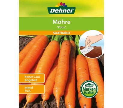 Dehner Saatband Möhre 'Rotin'