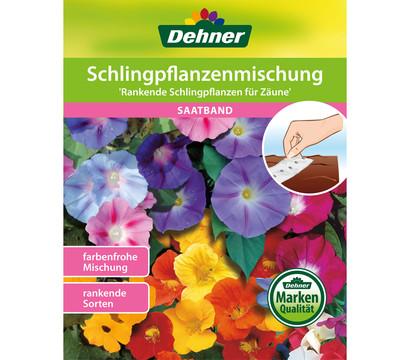 Dehner Saatband Schlingpflanzenmischung