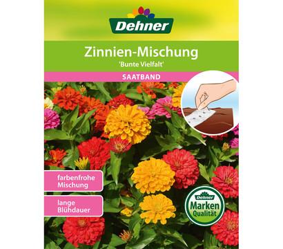 Dehner Saatband Zinnien-Mischung 'Bunte Vielfalt'