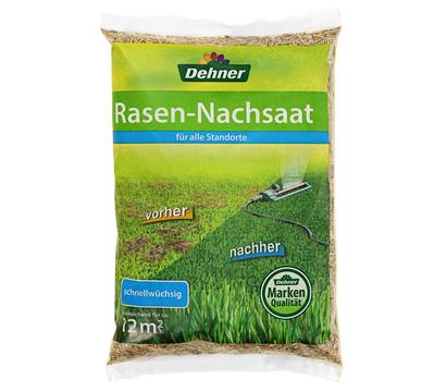Dehner Saatgut Rasen-Nachsaat