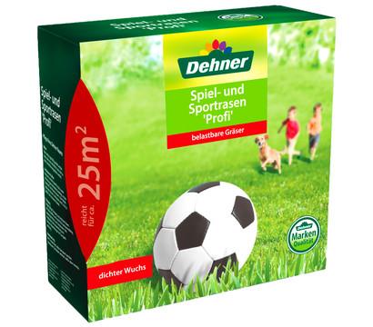 Dehner Saatgut Spiel- und Sportrasen 'Profi'