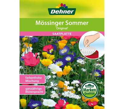 Dehner Saatplatte Mössinger Sommer 'Original'