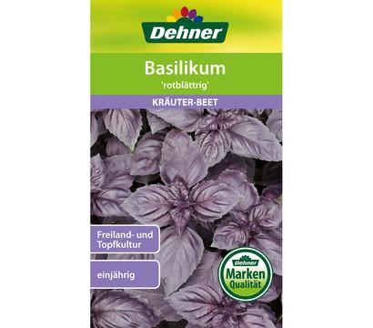Dehner Samen Basilikum 'rotblättrig'