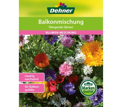 Dehner Samen Blumenmischung 'Balkonmischung Hängende Gärten'