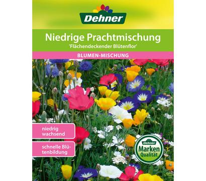 Dehner Samen Blumenmischung 'Niedrige Prachtmischung'