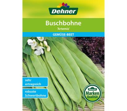 Dehner Samen Buschbohne 'Artemis'