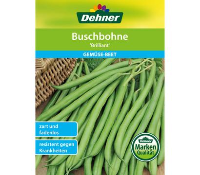 Dehner Samen Buschbohne 'Brilliant'