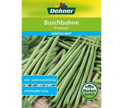 Dehner Samen Buschbohne 'Processor'