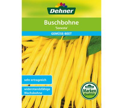 Dehner Samen Buschbohne 'Sonesta'