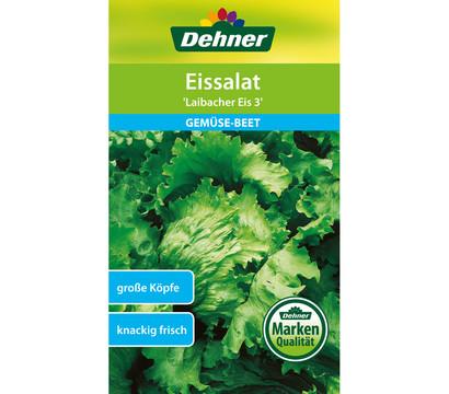 Dehner Samen Eissalat 'Laibacher Eis 3'