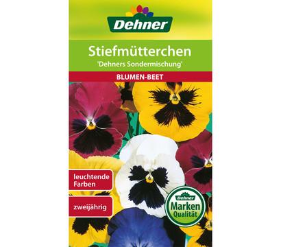 Dehner Samen für Stiefmütterchen 'Dehners Sondermischung'