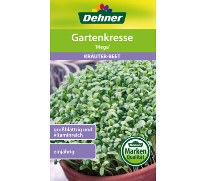 Dehner Samen Gartenkresse 'Mega'