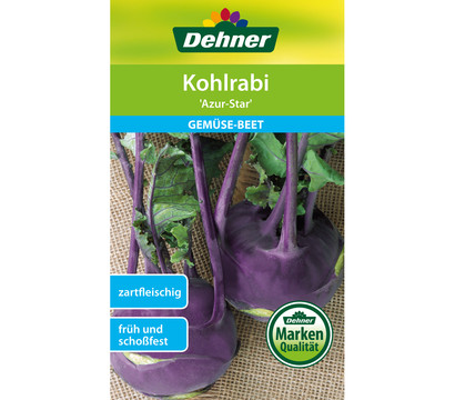 Dehner Samen Kohlrabi 'Azur-Star'