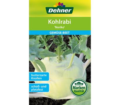 Dehner Samen Kohlrabi 'Noriko'