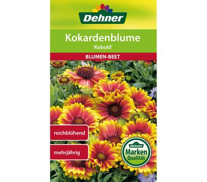 Dehner Samen Kokardenblume 'Kobold'