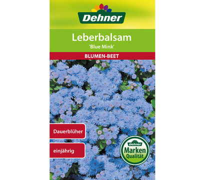 Dehner Samen Leberbalsam 'Blue Mink'