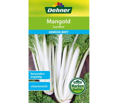 Dehner Samen Mangold 'Lucullus'