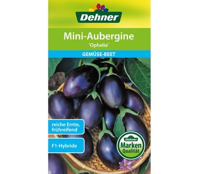 dehner samen mini aubergine 39 ophelia 39 dehner garten center. Black Bedroom Furniture Sets. Home Design Ideas