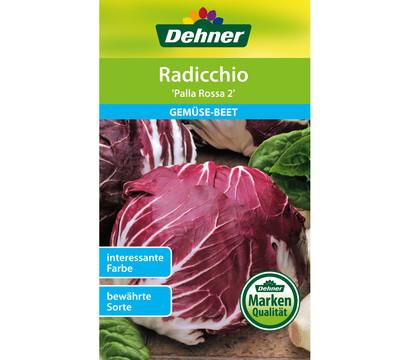 Dehner Samen Radicchio 'Palla Rossa 2'