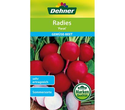 Dehner Samen Radies 'Parat'