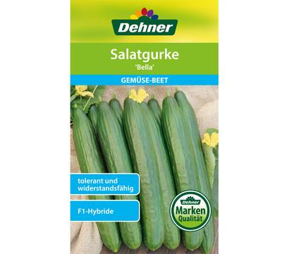 Dehner Samen Salatgurke 'Bella'