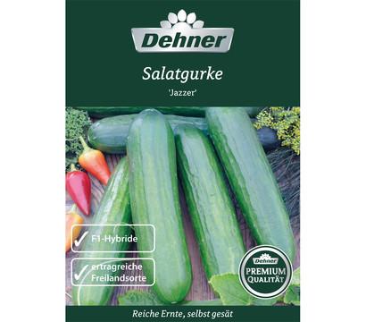 Dehner Samen Salatgurke 'Jazzer'