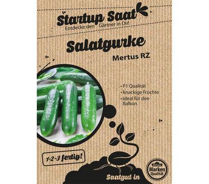 Dehner Samen Salatgurke 'Mertus RZ'