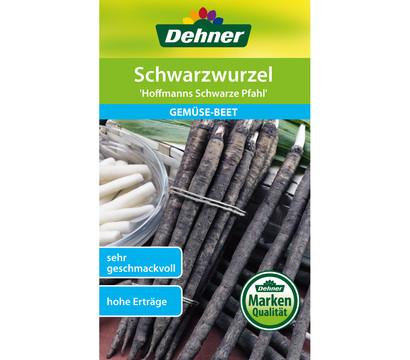 Dehner Samen Schwarzwurzel 'Hoffmanns schwarze Pfahl'