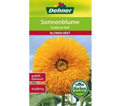 Dehner Samen Sonnenblume 'Goldener Ball'