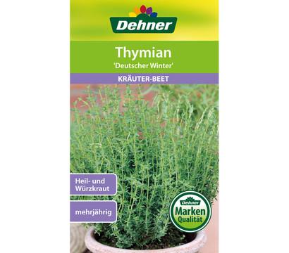 Dehner Samen Thymian 'Deutscher Winter'