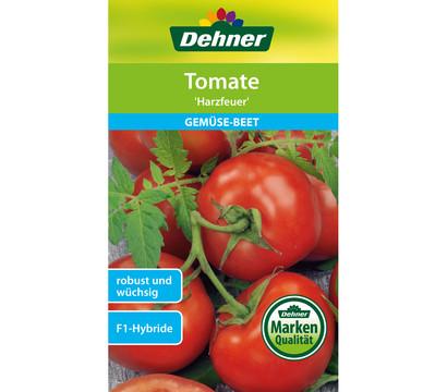 Dehner Samen Tomate 'Harzfeuer'