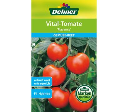 Dehner Samen Vital-Tomate 'Flavance'