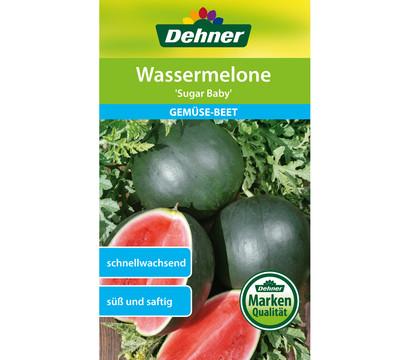 Dehner Samen Wassermelone 'Sugar Baby'