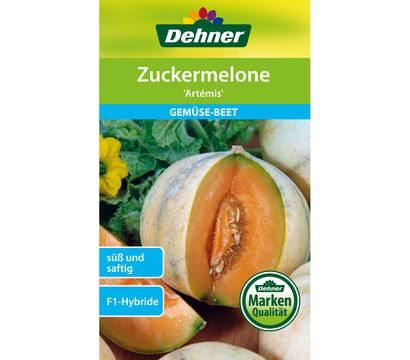 Dehner Samen Zuckermelone 'Artemis'