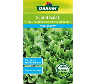 Dehner Schnittsalat 'A couper feuille de chene blonde a graine nore'
