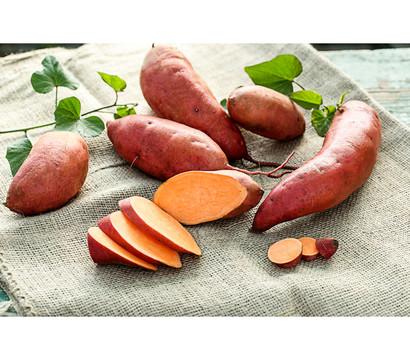 Dehner Süßkartoffel, orange
